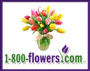 3. Check out the ProFlowers coupon collection. ProFlowers showcases an ever-changing collection of digital coupons online. Check out their current coupons to score discounts on orders, featured arrangements, and shipping. 4. Keep an eye on the Deals of the Day. Every day, ProFlowers runs Deals of the Day on select flowers. Keep an eye on this.