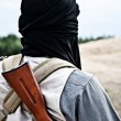 Congress Proceeds with Obama's Plan to Arm Syrian Rebels