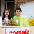 Neighbor Complains About Lemonade Stand…Gets Karma? Or Hypocrisy?