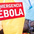 Nations Hit by Ebola Can Expect Poor Economic Growth in 2014