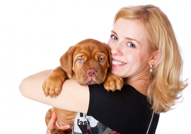 relationships between pets and their owners Understanding relations between people and their pets david d blouin indiana university south bend abstract as evidenced by the popularity of animal behavior shows and books, online viral pet videos.