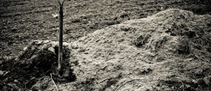 Uber Spending $1 Million to Dig Up Dirt on Journalist